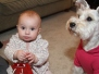 Berlo/Hollander Babies
